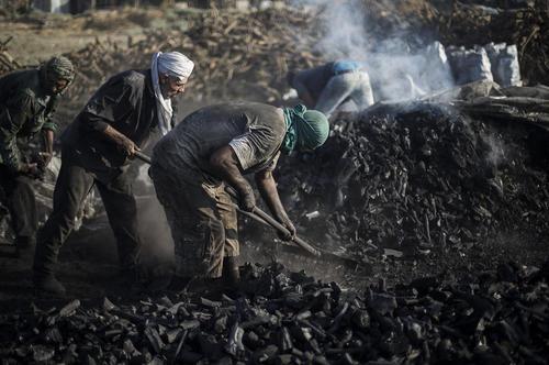 کارخانه تولید زغال چوب در باریکه غزه/ قدس نت