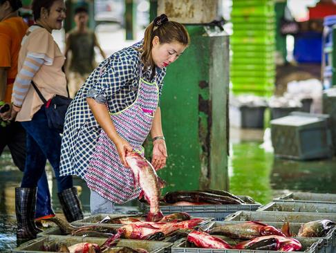 بازار ماهی شهر بانکوک تایلند