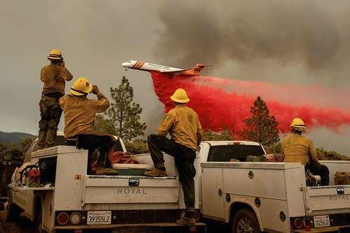 تلاش برای خاموش کردن آتش سوزی جنگلی در کالیفرنیا آمریکا / خبرگزاری فرانسه