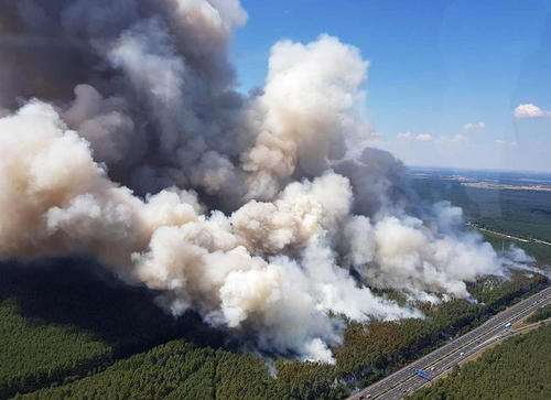 آتش سوزی جنگلی در پوتسدام آلمان / خبرگزاری آلمان
