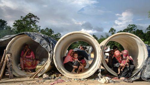 سرپناه پناهجویان مسلمان میانماری در مرز میانمار و بنگلادش/ عکس روز وب سایت