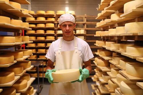 جشنواره پنیر در مسکو روسیه