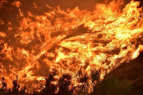 ادامه آتش سوزی مهیب در جنگلهای ایالت کالیفرنیا آمریکا/ خبرگزاری فرانسه