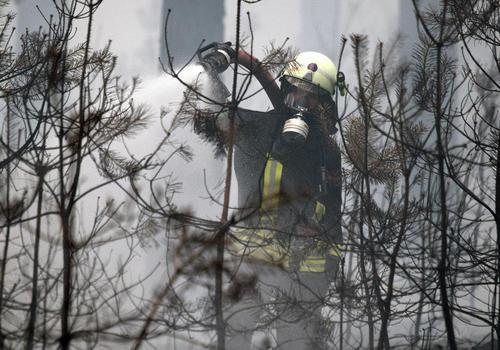 تلاش برای مهار آتش سوزی جنگلی در آلمان