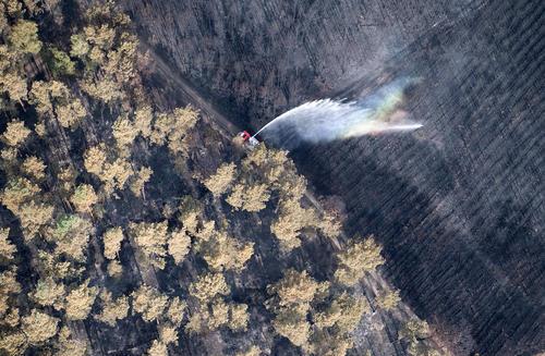 مهار آتش سوزی جنگلی در آلمان/ خبرگزاری آلمان