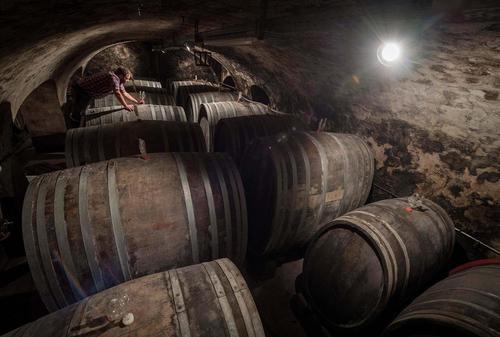 یک کارگاه تولید شراب در آلمان