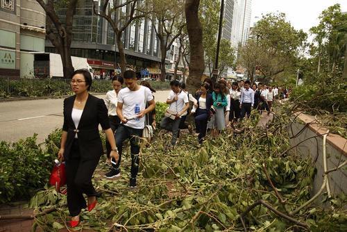 شکسته شدن شاخههای درختان در اثر توفان مهیب در هنگ کنگ