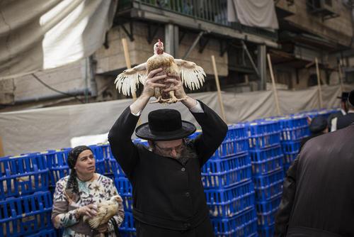 مراسم آیینی سالانه یهودیان در انتقال گناهان انسان به حیوانات (کاپاروت) در شهر قدس/خبرگزاری آلمان