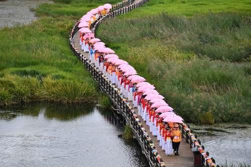 عروسی دسته جمعی 66 زوج چینی در سیچوان
