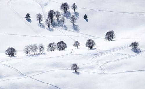 اسکی در کوههای آلپ  در ایتالیا/ عکس روز وب سایت