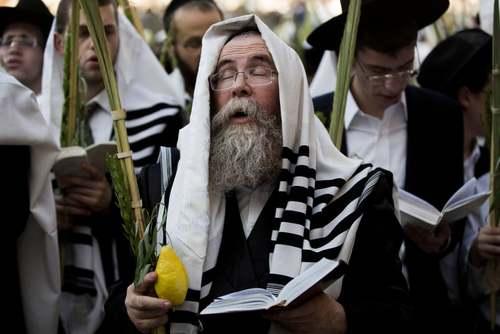 مراسم آیینی یهودیان ارتدوکس در مقابل دیوار غربی در شهر قدس /EPA