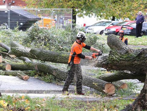 قطعه قطعه کردن درختی که در اثر توفان در شهر منچستر انگلیس شکسته است.