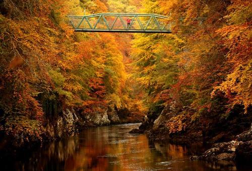 پلی روی رودخانه در اسکاتلند/ رویترز