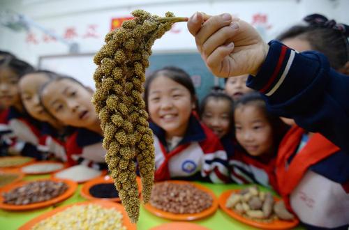 برنامه ویژه روز جهانی غذا در مدرسهای ابتدایی در چین