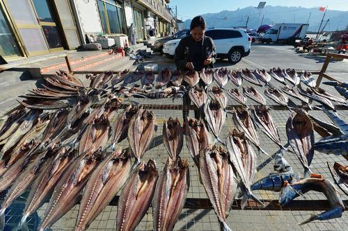 خشک کردن ماهی/چین