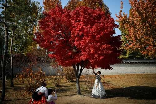 عکس گرفتن با لباس سنتی کرهای در محوطه قصری تاریخی در شهر سئول/ رویترز