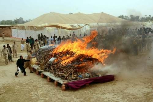 آتش زدن مواد مخدر در لاهور پاکستان/ شینهوا