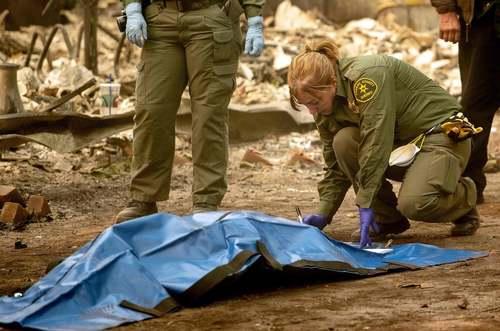 بیرون کشیدن جسدهای قربانیان آتشسوزی کالیفرنیا آمریکا از مناطق طعمه حریق شده/ خبرگزاری فرانسه