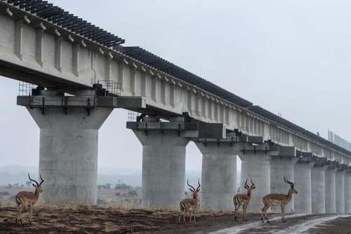 خط آهن عبور داده شده از روی پلی در پارک ملی کنیا / خبرگزاری فرانسه