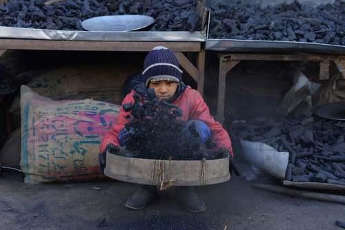 یک ذغال فروشی در هرات افغانستان/ خبرگزاری فرانسه
