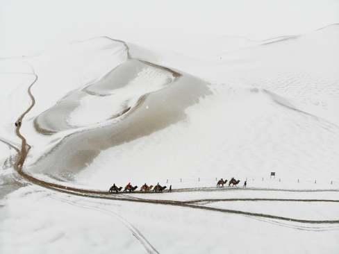 عبور کاروان شتر از کوهستان برفی- شمال چین