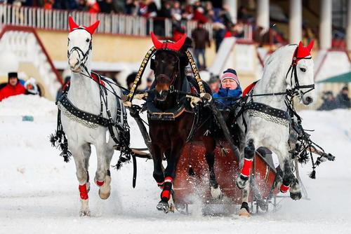 مسابقات سورتمه رانی در مسکو/ ایتارتاس
