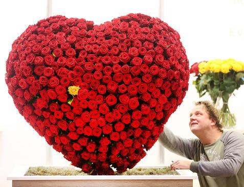 نمایشگاه گل و گیاه در اسن آلمان/ خبرگزاری آلمان