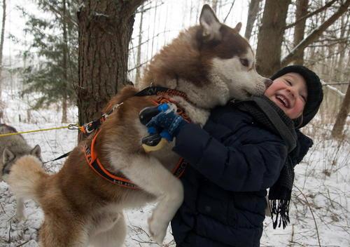 جشنواره سگ در مینسک بلاروس/ ایتارتاس