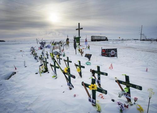 گل گذاشتن در محل سانحه اتوبوس برای یک تیم هاکی کانادایی که منجر به مرگ 16 تن و زخمی شدن 13 نفر دیگر شد. / کانادا پرس