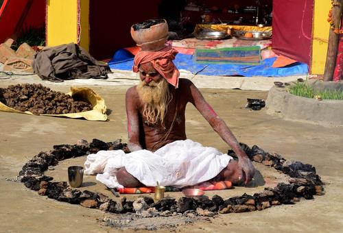 سوزاندن مدفوع گاو در یک آیین مذهبی از سوی یک راهب هندو در اللهآباد هند