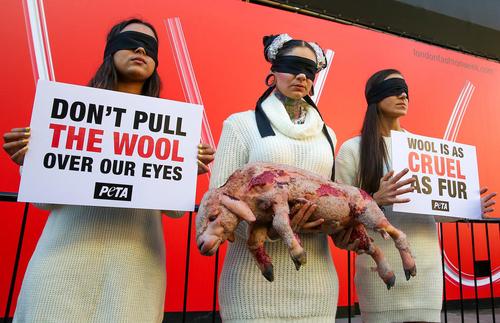 تجمع حامیان حقوق حیوانات در حاشیه آغاز هفته مد در لندن/ SOPA