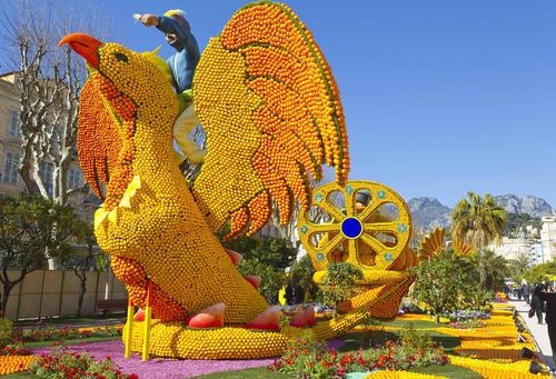 جشنواره سالانه لیمو در شهر