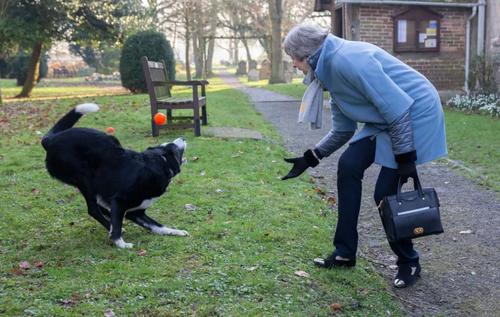 بازی نخست وزیر بریتانیا با سگش