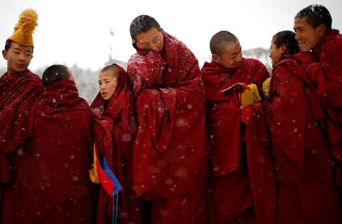 راهبان نوجوان بودایی در جشنواره بودا در استان
