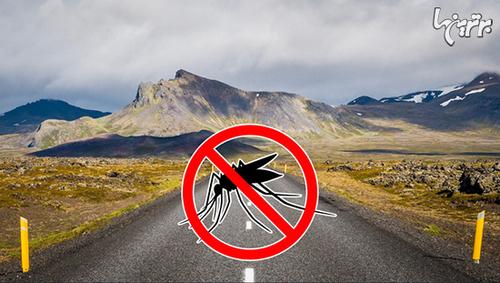 ایسلند پشه ندارد.