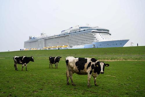عبور یک کشتی بزرگ از ساحل ساکسونی آلمان/ خبرگزاری آلمان