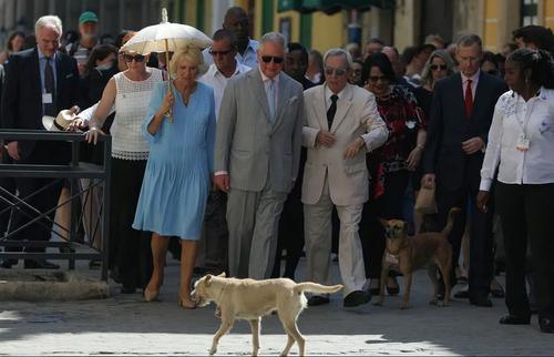 بازدید ولیعهد بریتانیا و همسرش از یک منطقه تاریخی در شهر هاوانا در جریان سفر رسمی این زوج سلطنتی بریتانیا به کوبا/ رویترز