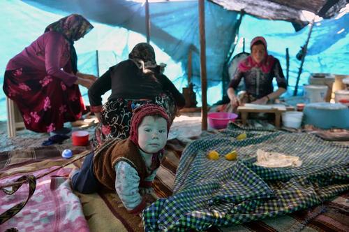 خانه عشایری در استان