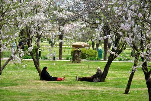 استراحت یک زوج کشمیری در یک پارک/SOPA