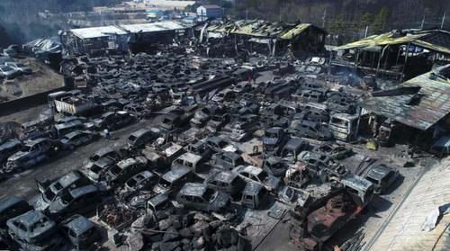 خسارات آتش سوزی جنگلی گسترده در کره جنوبی/ خبرگزاری فرانسه
