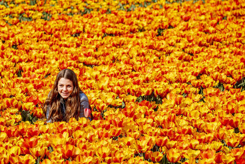 عکس گرفتن در مزرعه گل لاله در هلند