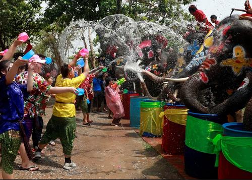 جشنواره آببازی در تایلند/ رویترز
