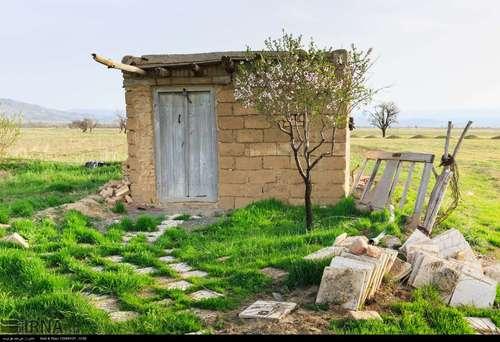 ایران زیباست؛ شکوفههای بهاری در آذربایجان شرقی (عکس) - 0