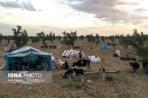 مردم سیلزده روستای خسرج حمیدیه ۳ هفته بعد از سیل (عکس) - 6