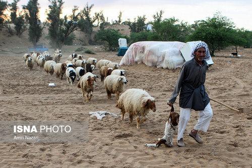 مردم سیلزده روستای خسرج حمیدیه ۳ هفته بعد از سیل (عکس) - 23