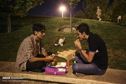 کار جالب شهرداری تهران در رمضان