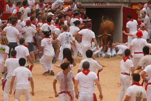 جشنواره سالانه گاوبازی