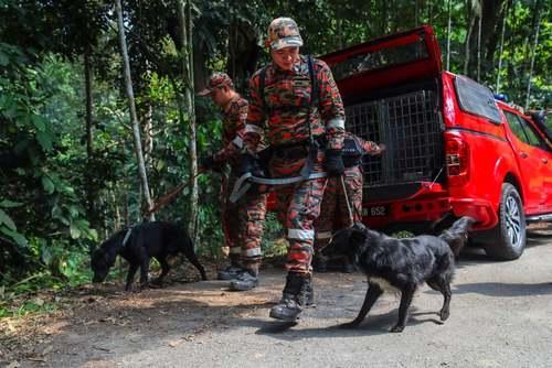 عملیات جستجو برای یافتن گردشگر دختر بریتانیایی مفقود شده در مالزی/EPA