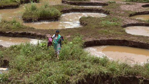 سیل آسیب زیادی را به کشاورزی هند کرده است. کشاورزی یکی از ارکان اصلی اقتصاد هند است/ اسکای نیوز