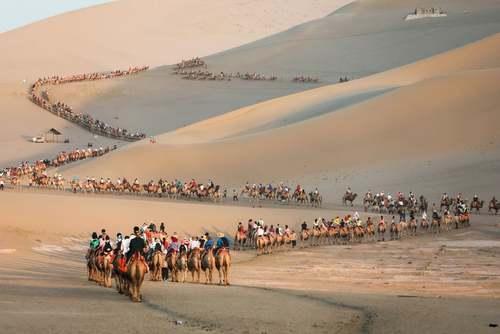 تور شترسواری گردشگران در صحرای